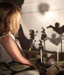20120302191410-moulin_roty_-_teatrzyk_cieni_dinozaury6218-web